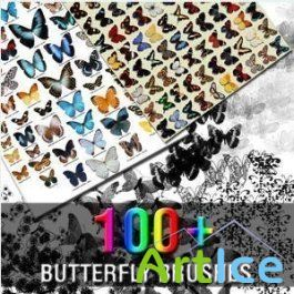 100 Butterfly Brushes for Photoshop