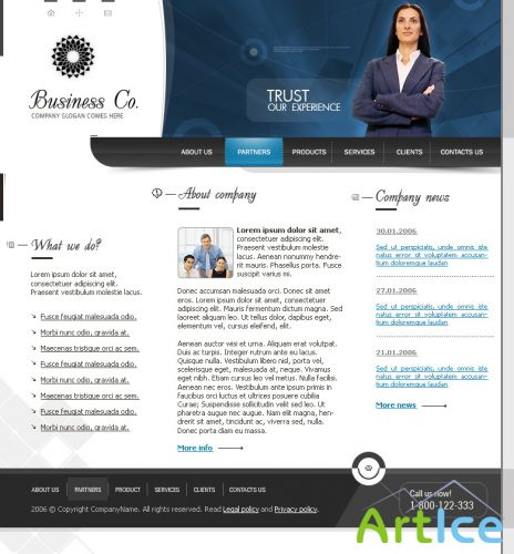 DesignLoad flash website template 5273