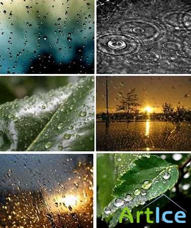 Beautiful Rainy Nature Wallpapers Set-1