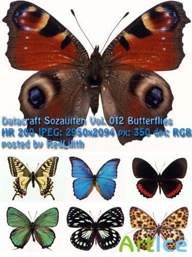 Фотоклипарт Datacraft Sozaijiten Vol. 012 Butterflies - Бабочки