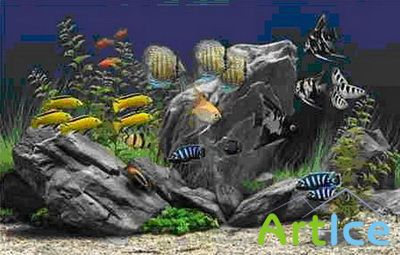Dream Aquarium Screensaver 1.24 Portable