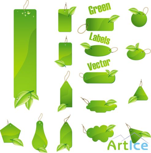 Green Labels Vector