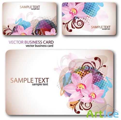 Colorful Cards Vector