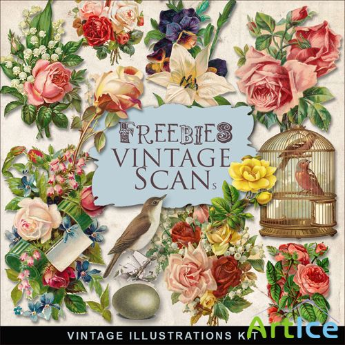 Scrap-kit - Vintage Flowers Illustrations #5