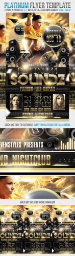 GraphicRiver - Platinum Flyer Template