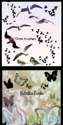 Birds and Butterflies brushes set
