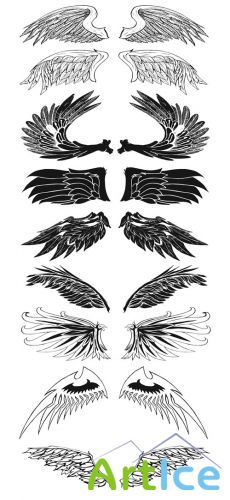 Exclusive Wings Brushes Pack 1
