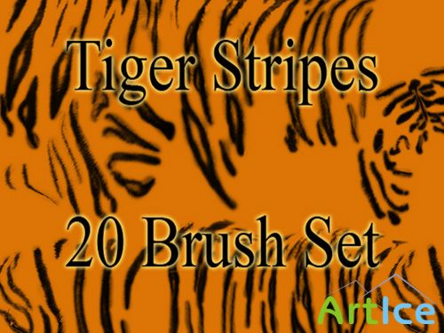 Tiger Stripes Brush Set