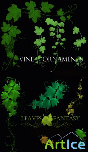 Vine Ornaments Brushes set for Photoshop