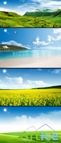 Flowering fields and summer beach in PSD