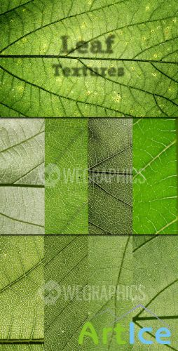 WeGraphics - Leaf Textures Vol. 1