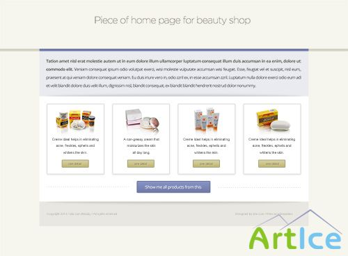 PSD Web Design - Flat piece from beauty eshop