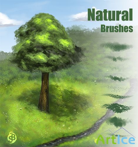 Natural ABR Brushset