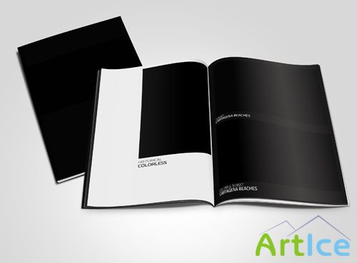 Magazine Mock-up Template PSD