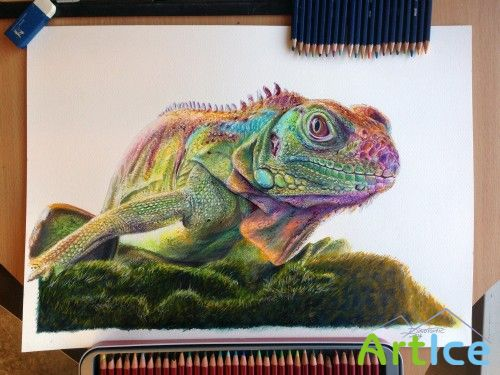 Art works by Dino Tomik