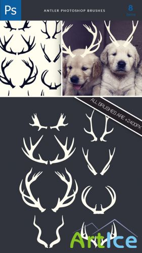 Designtnt - Antlers Brushes Set 1