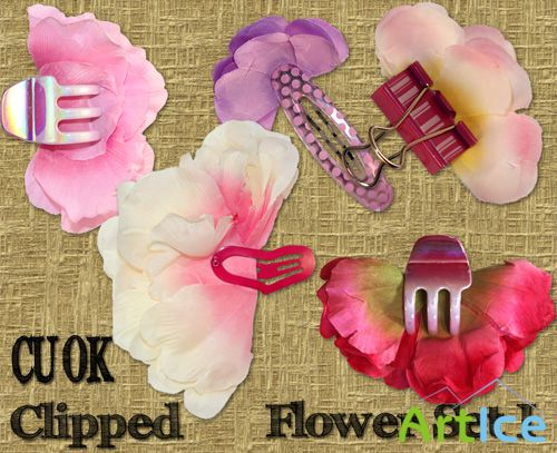 Clipped Flower Set 1 PNG Files