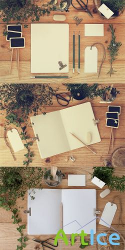 Stationery Mock ups with Nature PSD