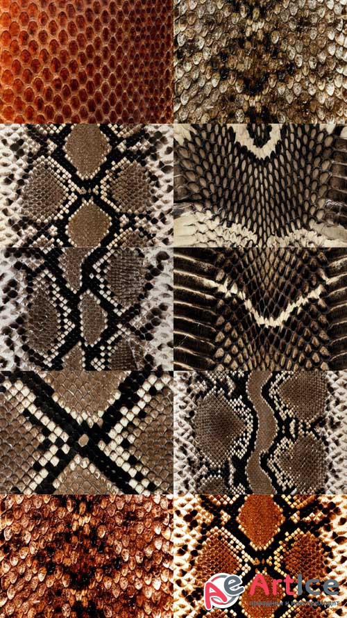Snake Leather Textures JPG Files