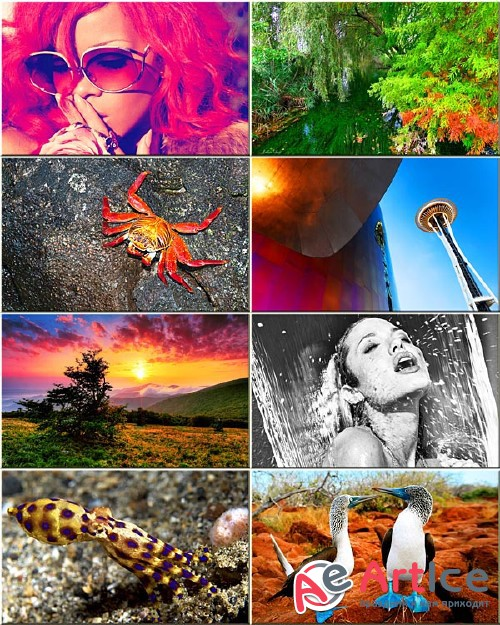 Best Mixed Wallpapers Pack #124