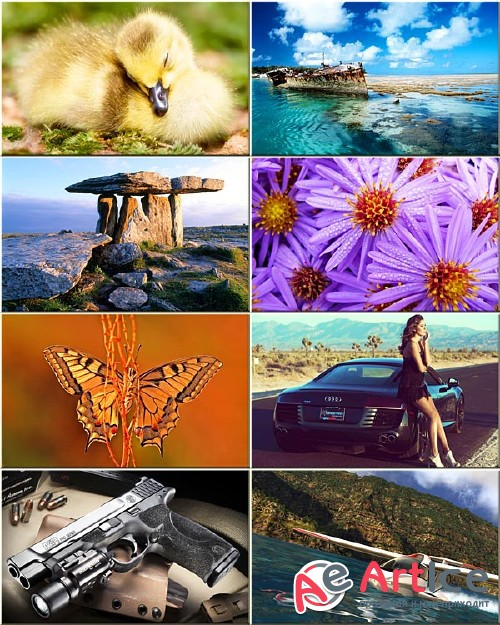 Best Mixed Wallpapers Pack #139