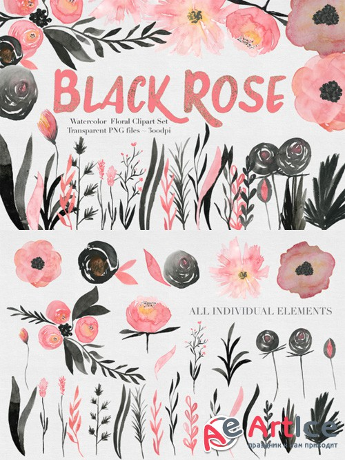 Black & Pink Rose Watercolor Set - Creativemarket 515844