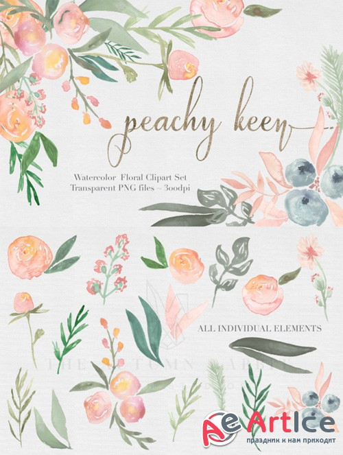 Peachy Keen Watercolor clipart Set - Creativemarket 476836