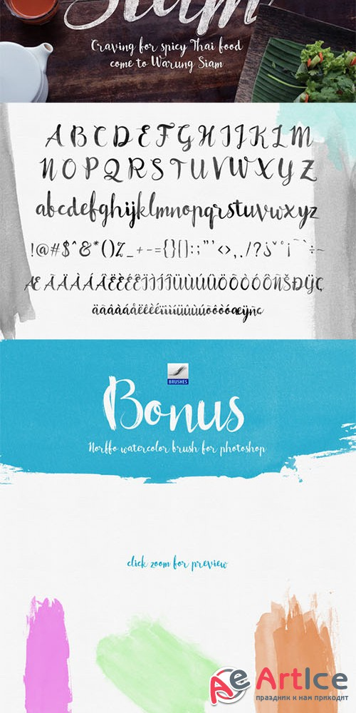 Norffo Font + Watercolor Brush - Creativemarket 253483