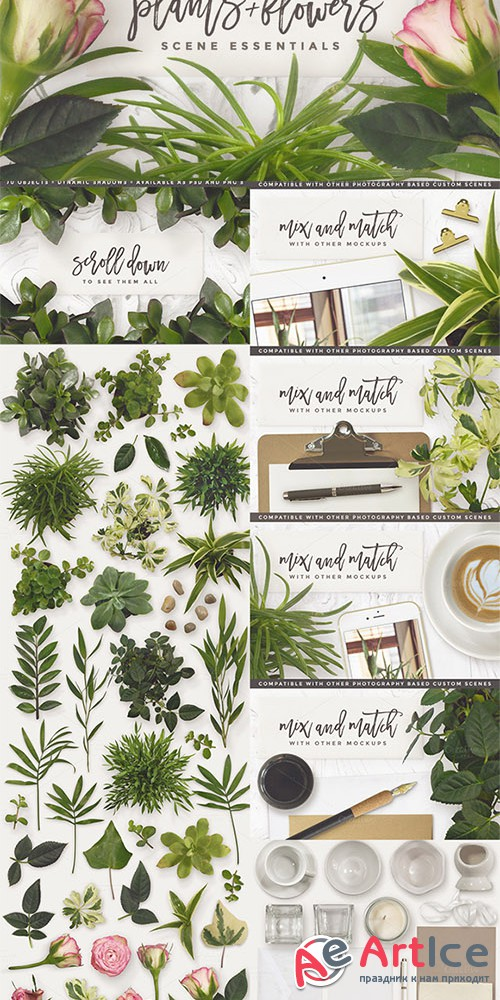 Essential Plants & Flowers - Creativemarket 578140