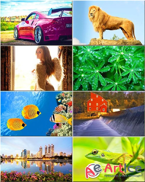 Best Mixed Wallpapers Pack #130