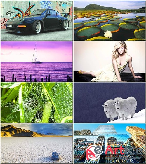 Best Mixed Wallpapers Pack #255