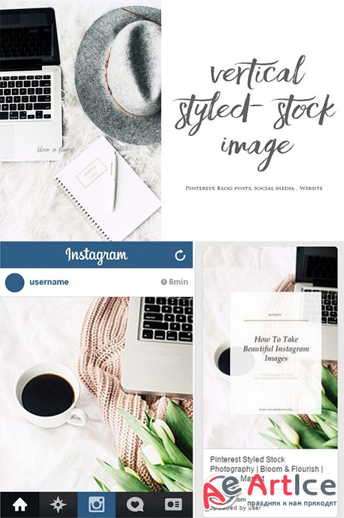 Vertical Styled Stock Image 8 - Creativemarket 582941