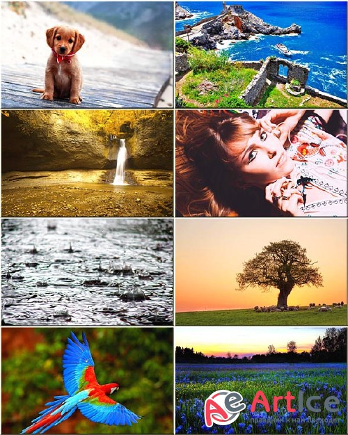 Wallpapers Mixed Pack #85