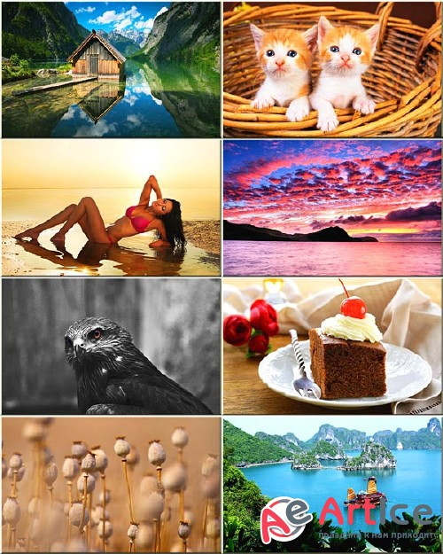 Best Mixed Wallpapers Pack #254