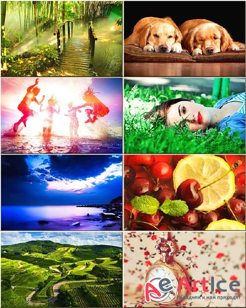 Wallpapers Mixed Pack #266