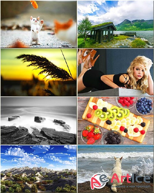 Best Mixed Wallpapers Pack #159