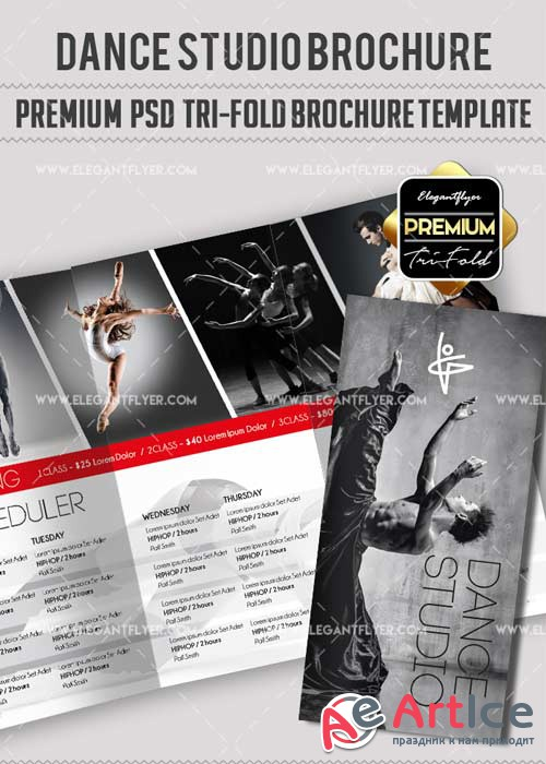 The Dancer Studio V10 Premium Tri-Fold PSD Brochure Template